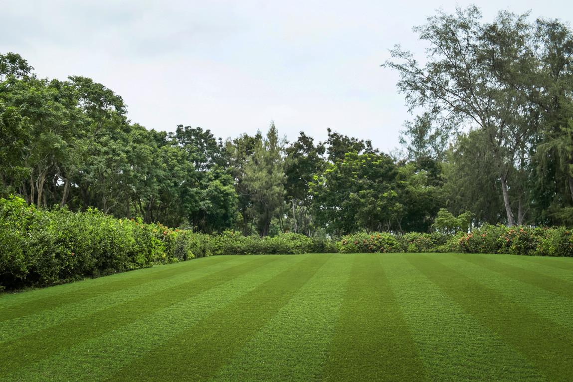 Pro Lawn Multi Lane
