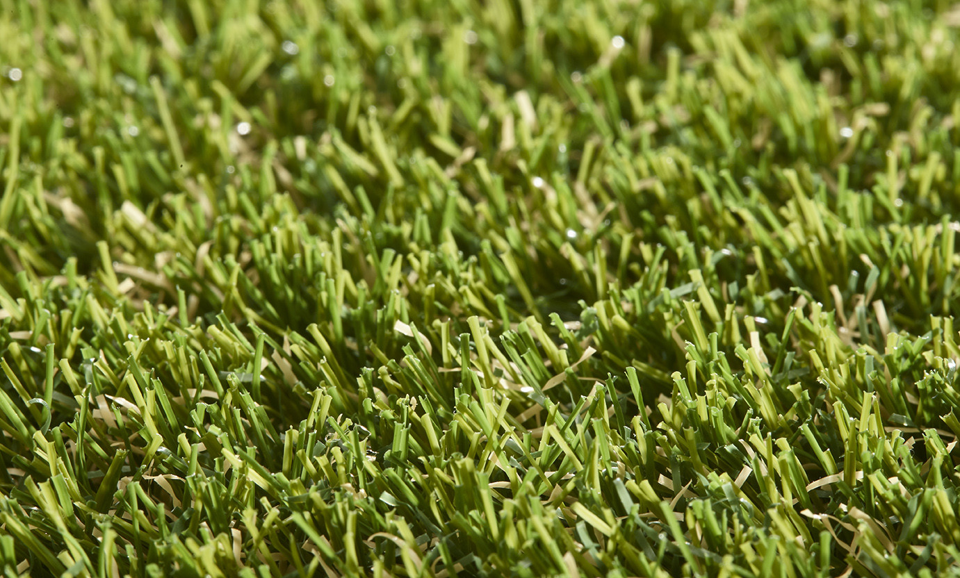 Pro Lawn Vinca