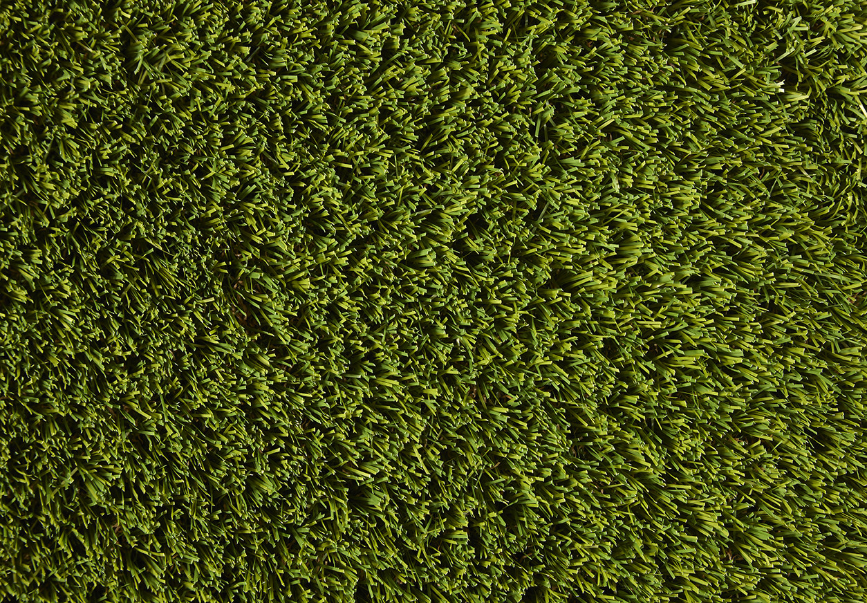 Pro Lawn Florence