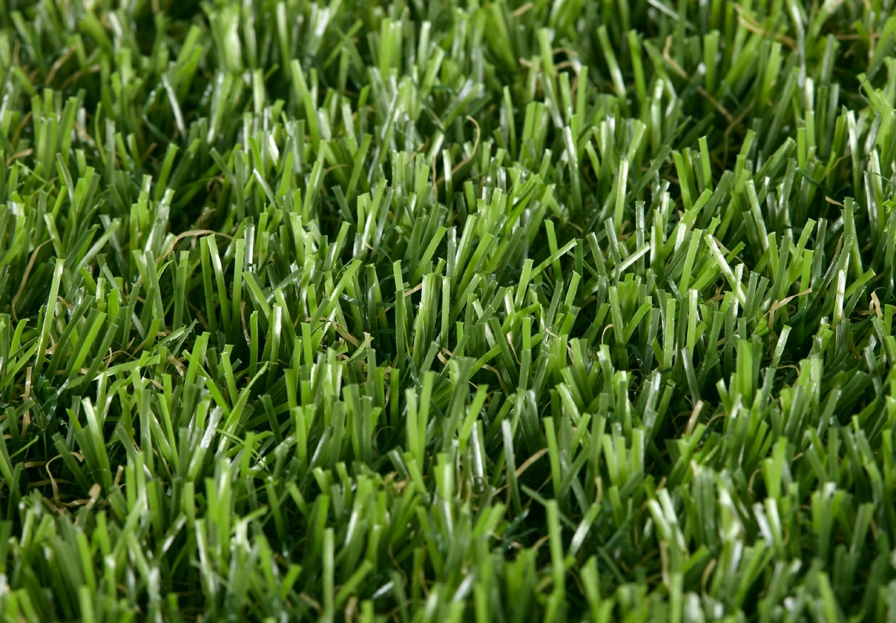 Easy Lawn Castor