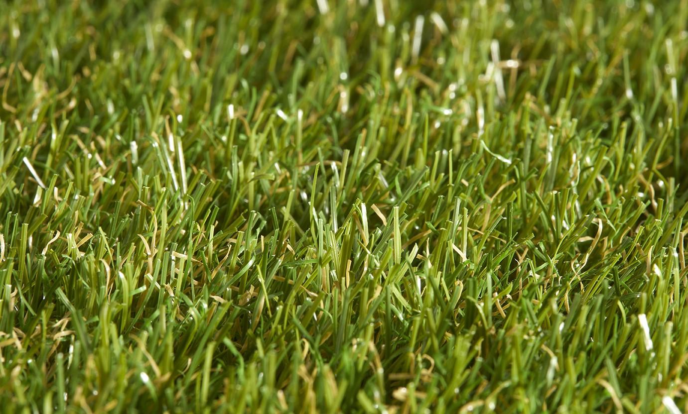 Star Lawn Talia