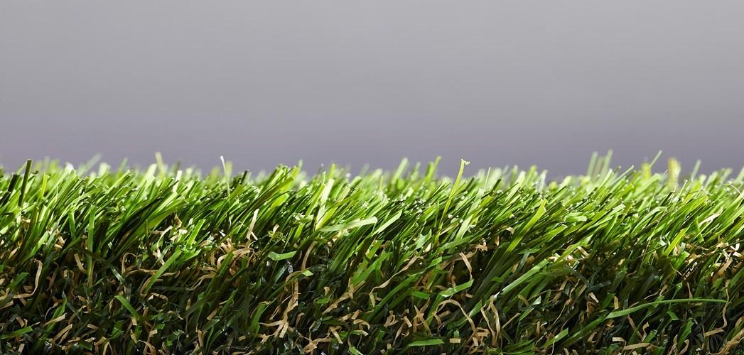 Easy Lawn Sage