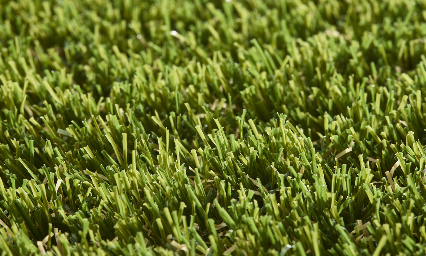 Easy Lawn Valeria